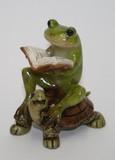 亀乗り 蛙