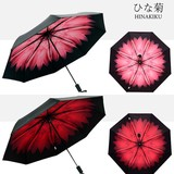 紫外線UVカット★晴雨兼用★遮熱遮光性抜群 内側ひな菊模様 折りたたみ傘、日傘ブラックコーティング