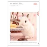 【LA DOLCE VITA】シリーズ 19 A4クリアファイル 11490 スイーツラビット