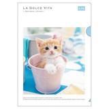 【LA DOLCE VITA】シリーズ 20 A4クリアファイル 11537 カップアンドキャット