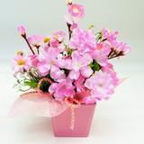 桜アレンジ S-03【春】【プレゼント】