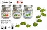 ガーデン・ジャー 3種類のミント