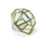 ダイアモンドテラリウム B