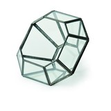 ダイアモンドテラリウム C