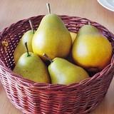 Fake Fruit Fruit