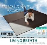 ブレスエアー 東洋紡 BREATHAIR 洗える マット ラグ カーペット  『リビングブレス』
