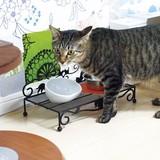 【ネコ/CAT(猫)】ペット用 テーブル・ベッド ネコ  【PET】