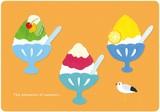 夏柄イラストポストカード(樹脂盛り):かき氷・カモメ