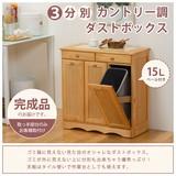 【直送可】【KITCHEN】MUD-3557NA ダストボックス(送料無料)