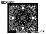 HAV-A-HANK Skulls & Flames BANDANA  14629