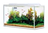【観賞魚水槽】サイレントフィット500