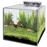 【観賞魚水槽】グラステリアキューブ 300 セット