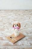 レッスンキット・ドッグインカップ(シーズー)【レベル3】【犬】【上級者】【リアル羊毛フェルト】