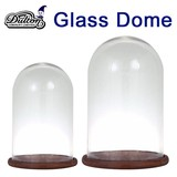 ■2016SS 新作■ GLASS DOME