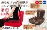 ◆3D姿勢シャキット クッション