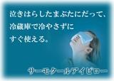 ◆サーモクールアイピロー