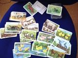[ドイツ] カードゲーム haustiere und ihre jungen