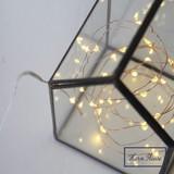 【先行予約】【秋冬新作】(10月納品)LED ワイヤーライト クレール クリスマス