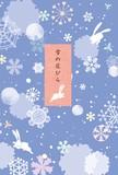 ハガキ箋 雪の花びら