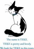 おすましTEKE(テケ)スリットTシャツ(レディース・メンズ兼用) 漫画家CANICO