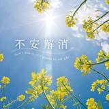 【音楽CD】[Amazonレビュー評価高]不安解消 癒し雑貨 音楽CD BGM ヒーリング音楽
