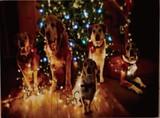 キャンペーン対象!【2016クリスマス】LED Picture Light-Wonder X'mas