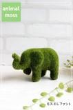 moss*モスエレファント*Elephant【雑貨】0078