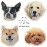 イヌのフェイスが可愛いコースター【ANIMAL MASK COASTER】アニマルマスク コースター 彩りキッチングッズ