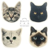 Animal Real ANIMAL Animal Mask Stationery Animal Color Kitchen