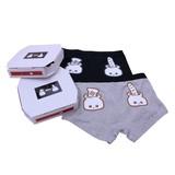 【パッケージボックス付】メンズインナーパンツ(Men's Underwear パン2)