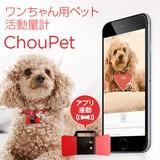 ワンちゃん用ペット活動量計 ChouPet(シューペット)