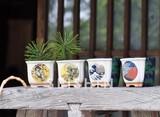 【Collection Catalog】JAPANESE BONSAI 和 日本 プレゼント お土産 富士山 黒松