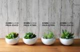 白陶器S/白玉石シリーズ1【フェイクグリーン/artificial plants】