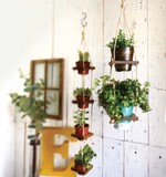 Hanging Pot 2 type Natural Miscellaneous goods