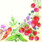 Maki  ペーパーナプキン 野菜