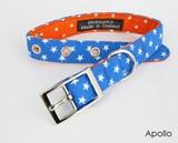 首輪 ハーネス 星 ブルー ドッグ 犬 英国ブランド BlossomCo ブロッサム 日本未入荷