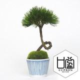 松・扇/そばちょこ(市 松)(波唐草)(点十草)【カップボン】【フェイクグリーン/artificial plants】