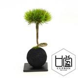 松・扇/竹炭ボール(黒皿)【カップボン】【フェイクグリーン/artificial plants】