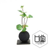 Bamboo Coal Ball Plate Cup Artificial Plants