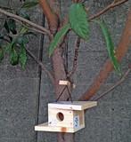 Bird house kit モダンタイプ