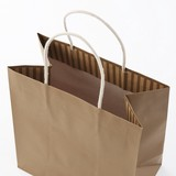 10 Colors Handbag Bag Color Plain Paper Bag Wrapping