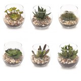 Imitation Green Glass Pot Dessert Ornamental Plant Artificial Plants