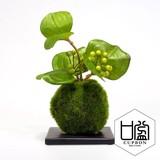 サンキライ/苔玉(黒皿)【カップボン】【フェイクグリーン/artificial plants】