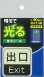 【蓄光シール】アルファフラッシュ AF1001 出口