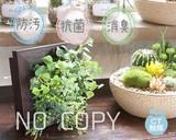 Catalyst Deodorize ARTIFICIAL GREEN Natural Brown