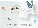 CU動物ポップカード(ジャンプ犬)