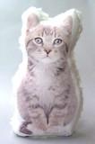 【5月21日から31日まで10%分引きセール!】【ファークッション キャット】4種 ネコ雑貨