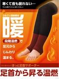 Teacher Ankle Supporter