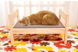 【直送可】【送料無料】ペット用木製ベッド