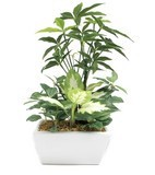 Artificial Plants Catalyst Processing Artificial Flower Interior Plant
